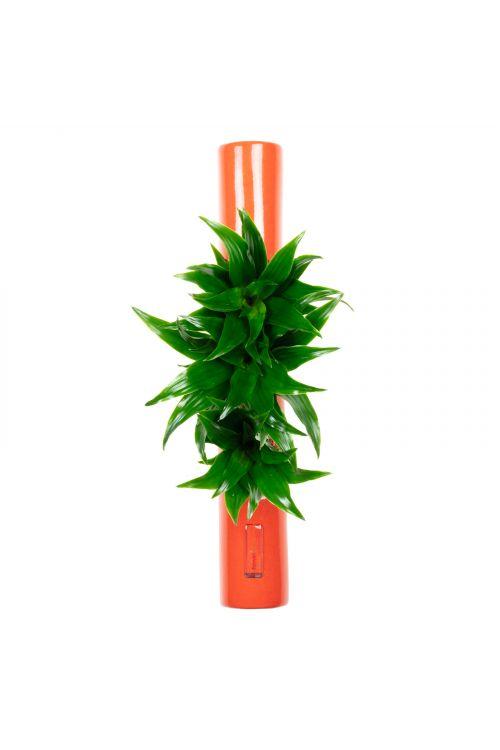 Tube - orange - 40x6,5 cm