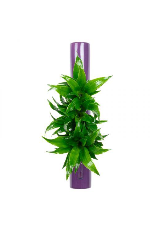 Tube - violett - 40x6,5 cm